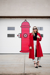 Sandy Joe Karpetz - Ray Ban Tortoise Shell Wayfarer, Vintage Black Turtleneck Tank, Guess Two Tone Denim Jeans, Alexander Wang Lovisa Heels, Vintage Red Velvet Coat - Red Velvet