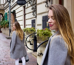 Pivonia Tederska -  - Grey coat
