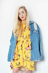Aneta M - Jacket, Dress - YELLOW