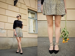 Paula Avalon - Romwe Black Crop Sweater, Mango Metallic Skirt - Golden roses