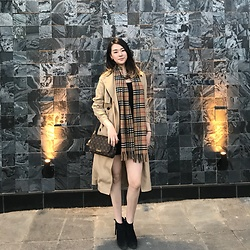 Chris J. Shin - Burberry Wool Scarf, Louis Vuitton Crossbody Bag, Aritzia Trench Coat, Sam Edelman Black Suede Booties - Beige