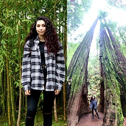 Celina G -  - Mini Me in Muir Woods