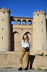 Elisabeth Green - Zaful Shirt, Stradivarius Pants, Mango Bag - Yellow Plaid