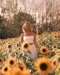 Elin Hansson -  - You're a sunflower