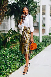 Ria Michelle - Zara Crop Tie Shirt, Maje L Dance Faux Fur Shoulder Bag, Zara Snakeskin Skirt, Zara Jane Sandal - Snakeskin: My New Favorite Animal Print